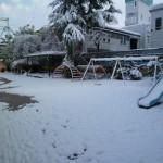 園庭も雪化粧